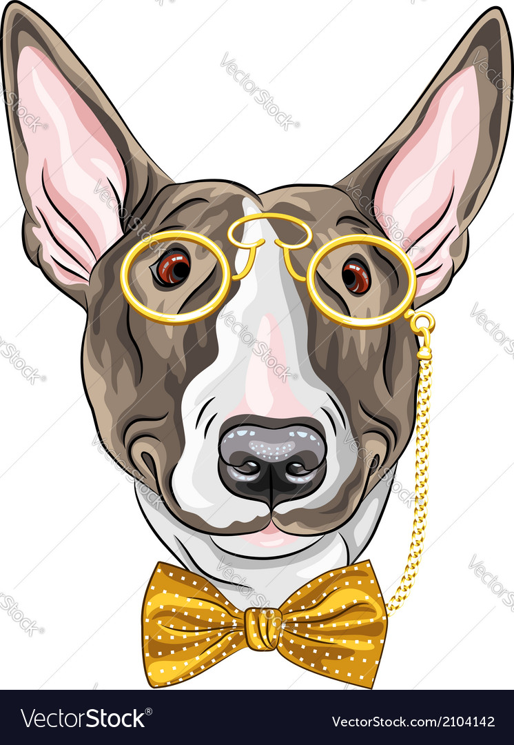 Hipster dog bullterrier breed vector | Price: 1 Credit (USD $1)