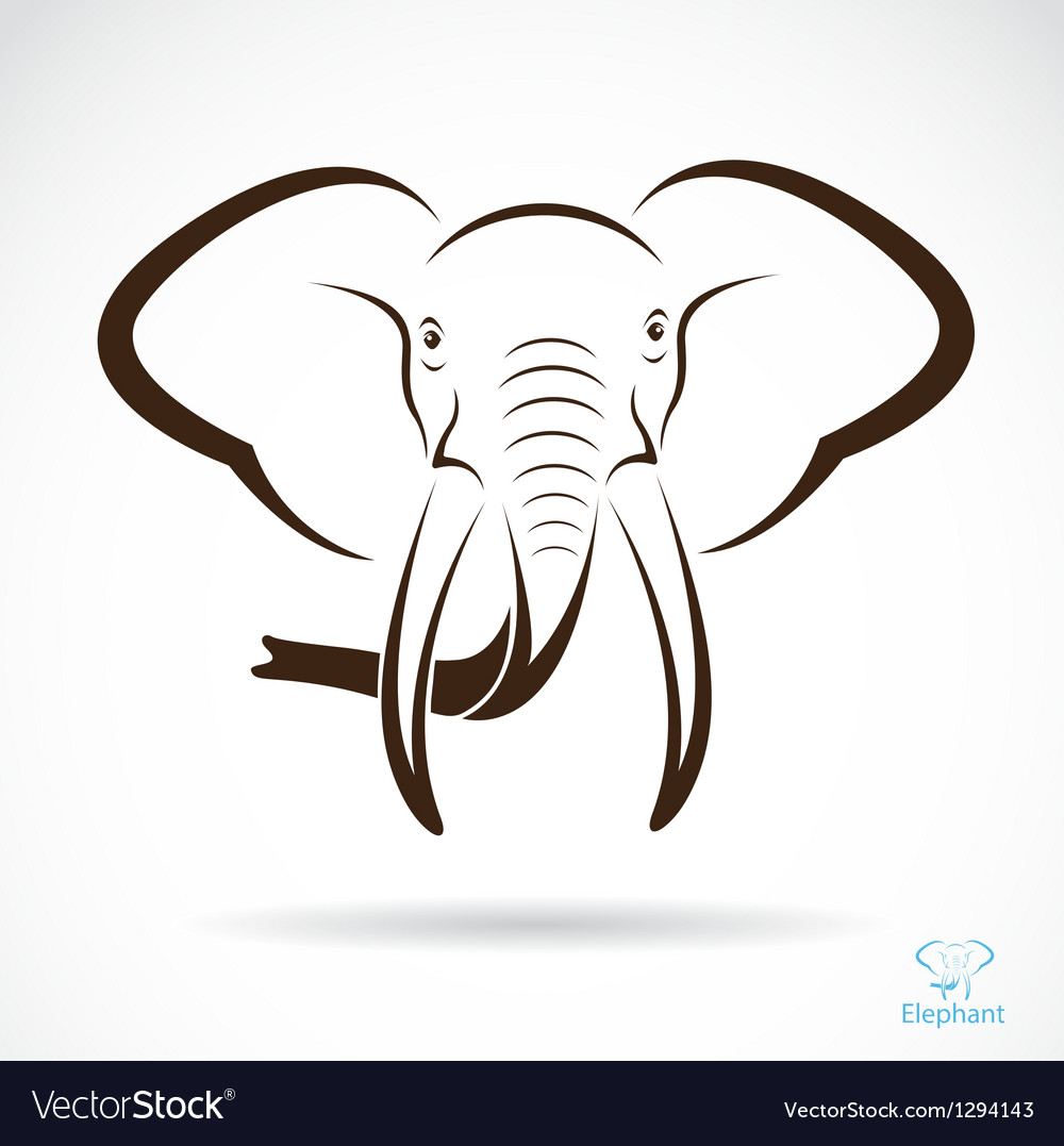 Elephant vector | Price: 1 Credit (USD $1)