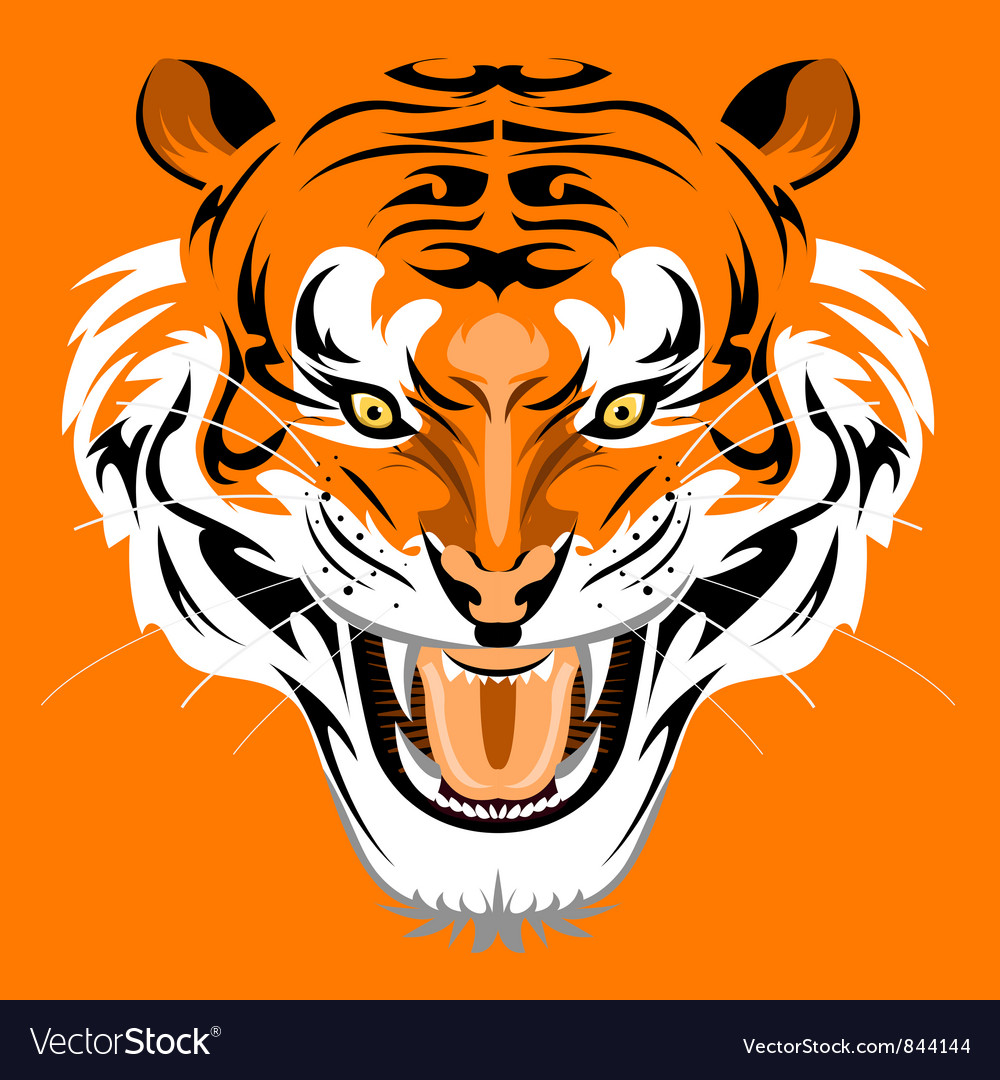 Sumatran tiger vector