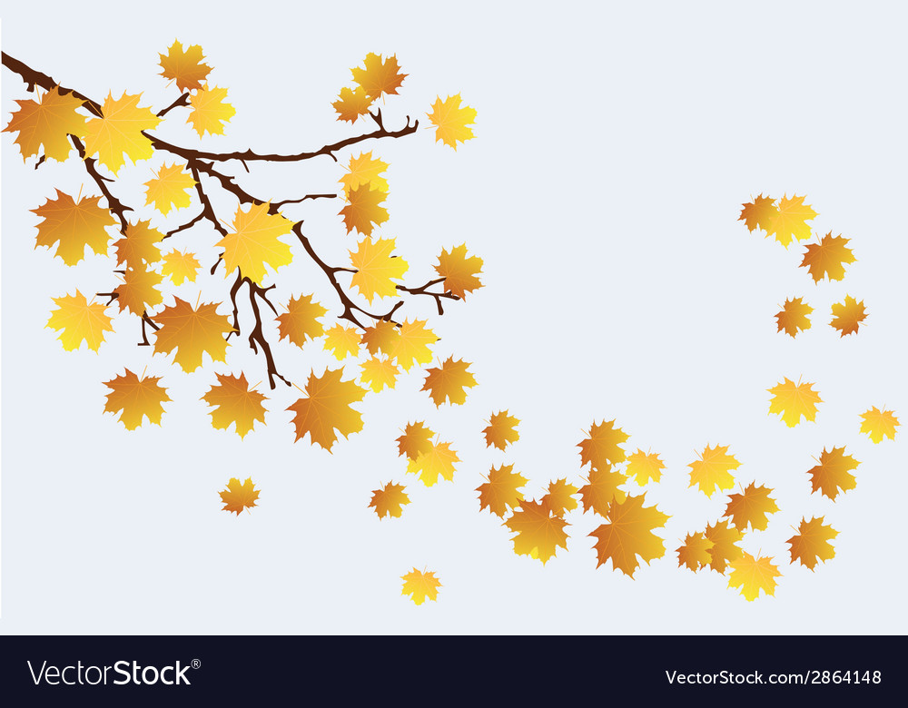 Fall branch vector   Price: 1 Credit (USD $1)