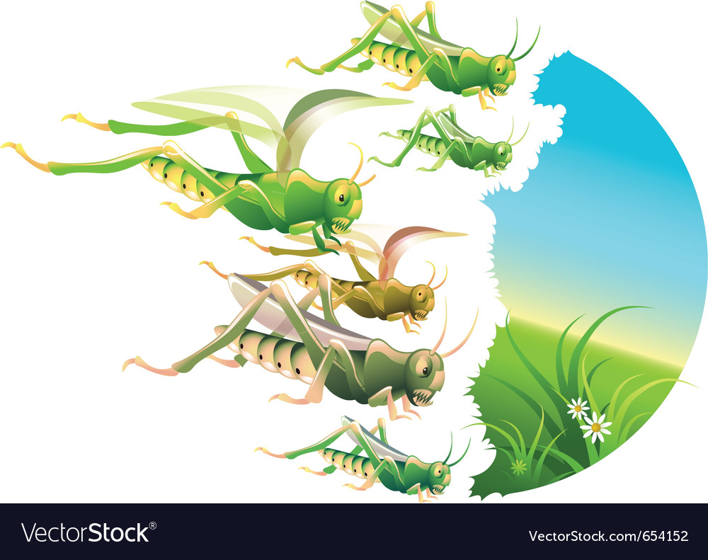 Locust plague vector | Price: 3 Credit (USD $3)