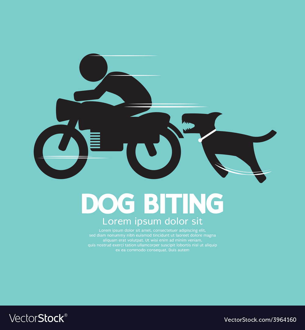 Dog biting a man on a motorcycle vector | Price: 1 Credit (USD $1)
