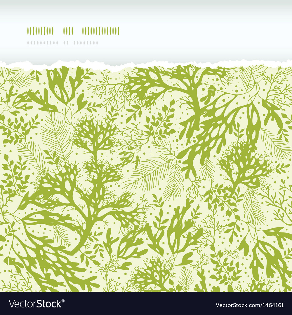 Green underwater seaweed horizontal torn seamless vector | Price: 1 Credit (USD $1)