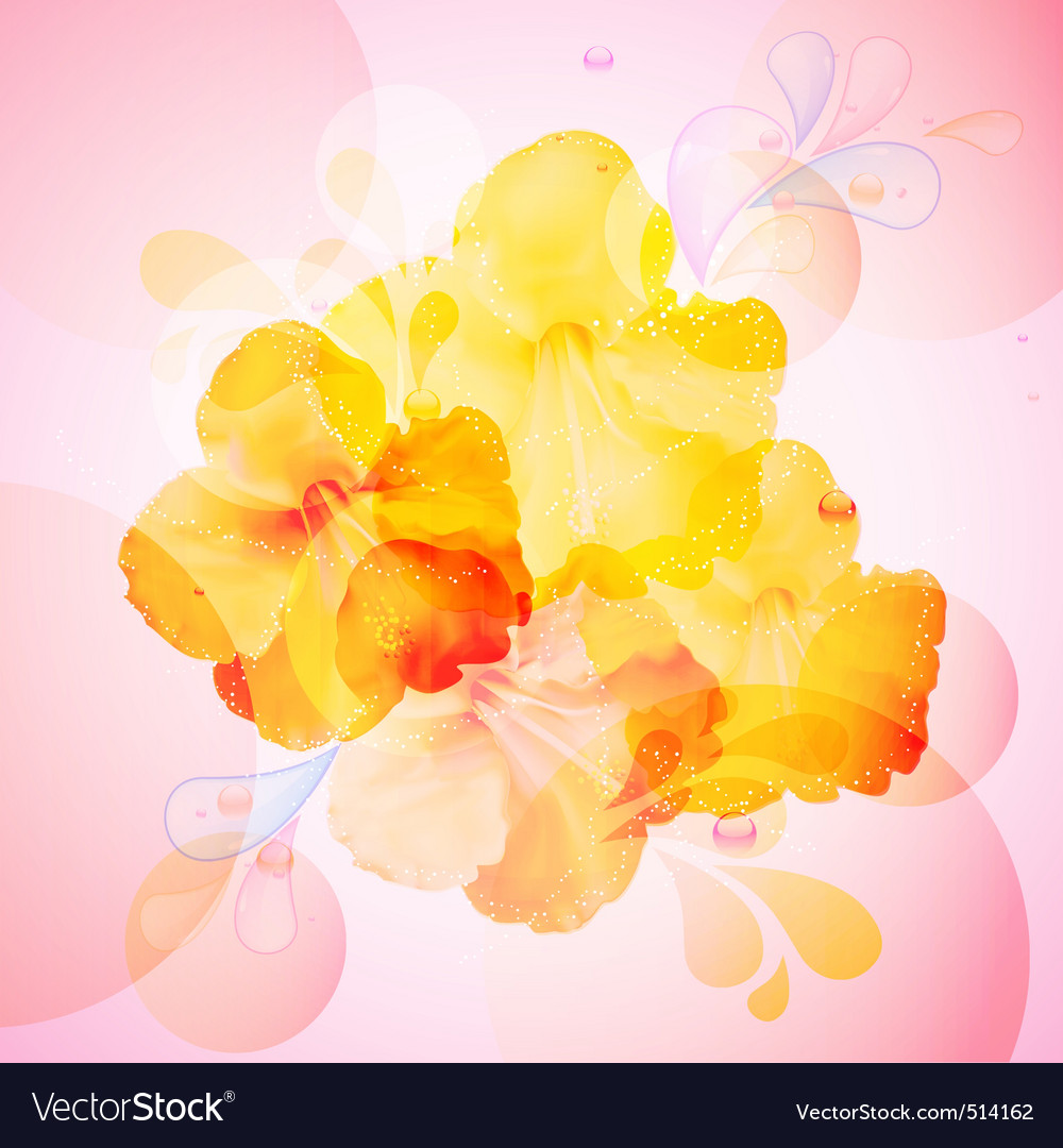 Hibiscus flowers background vector | Price: 1 Credit (USD $1)