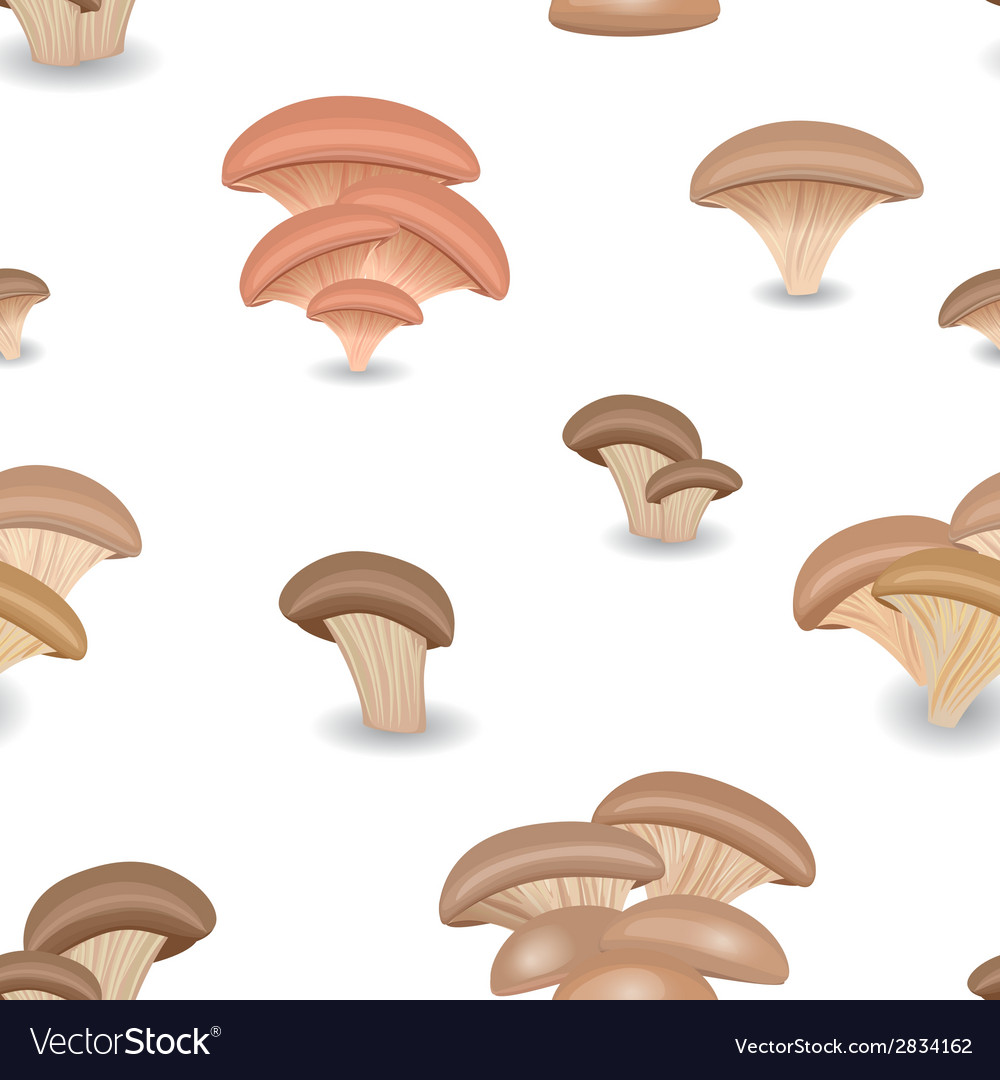Seamless texture with edible mushroom oysters vector   Price: 1 Credit (USD $1)