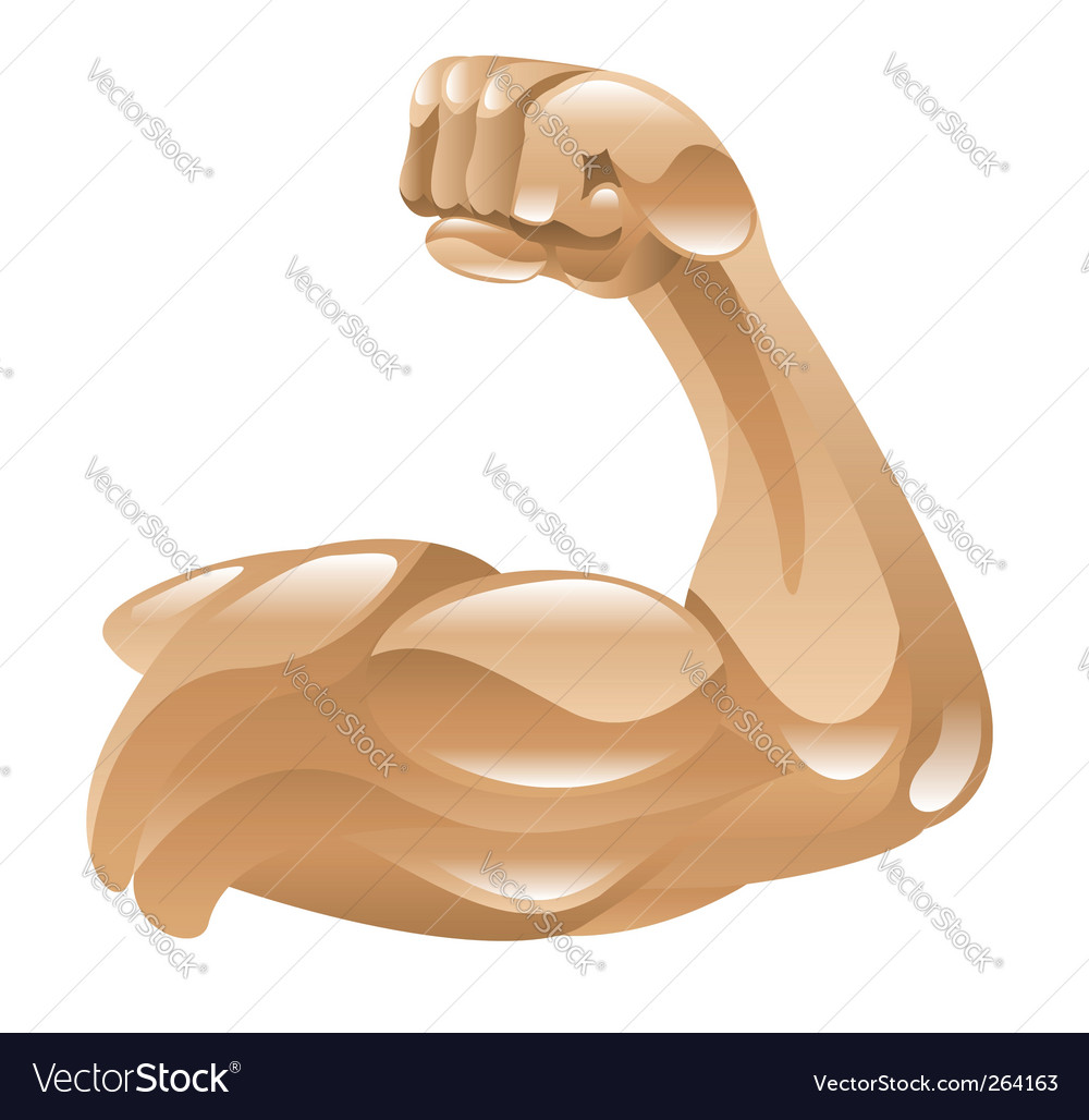Strong muscular arm vector | Price: 1 Credit (USD $1)
