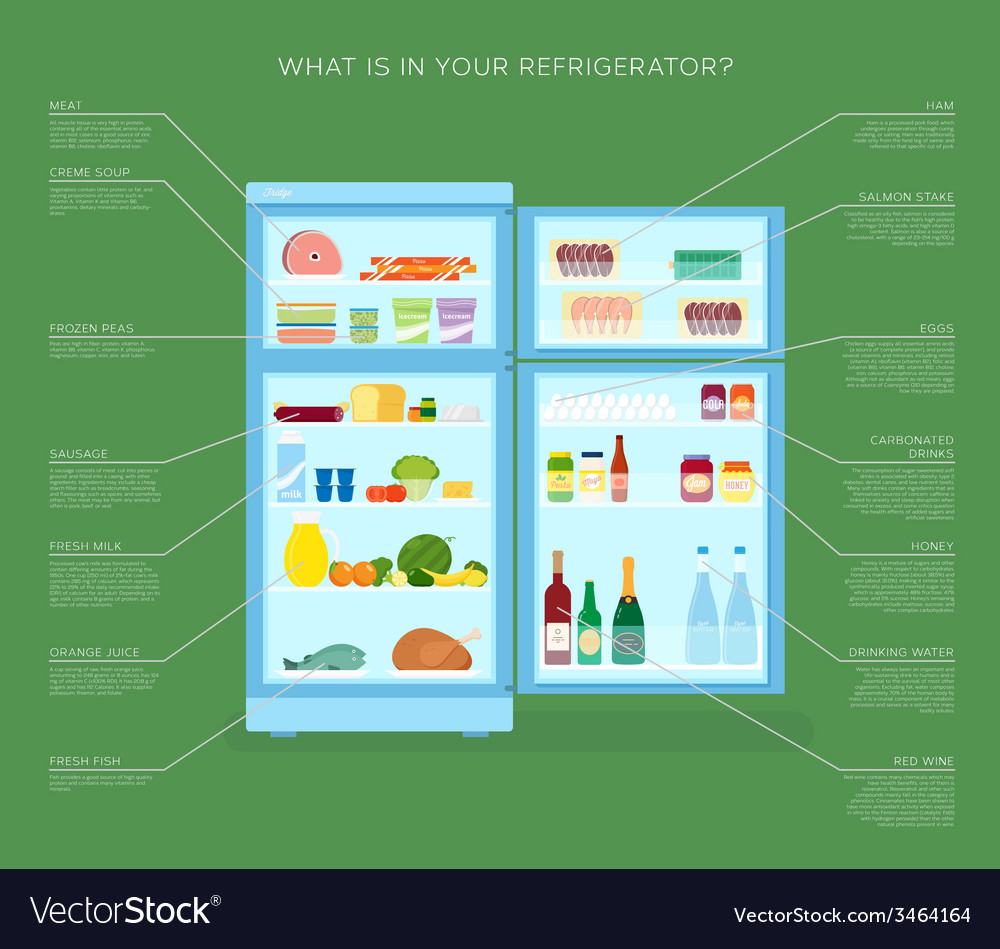 Infographic refrigerator with food icons flat vector | Price: 1 Credit (USD $1)
