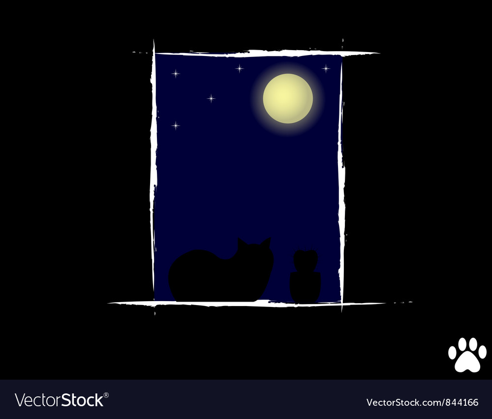 Cat in the night looking vector | Price: 1 Credit (USD $1)