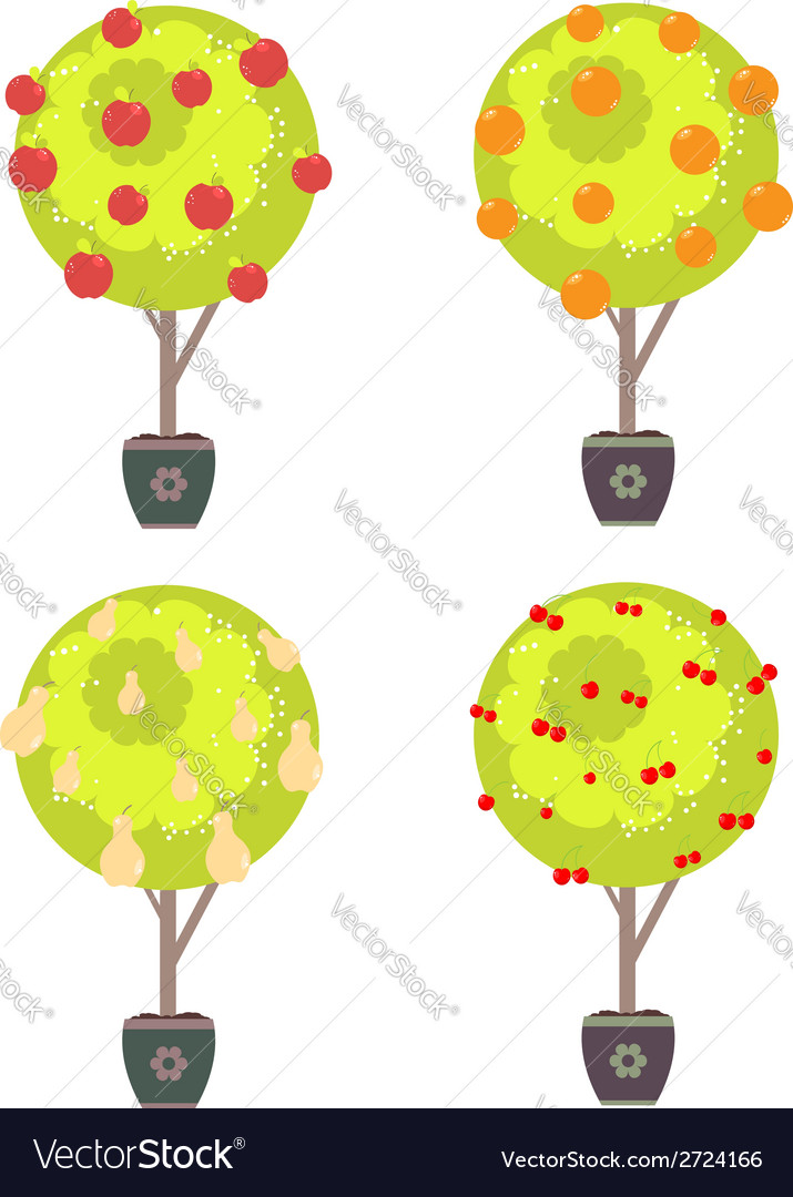 Different fruits in a trees vector | Price: 1 Credit (USD $1)