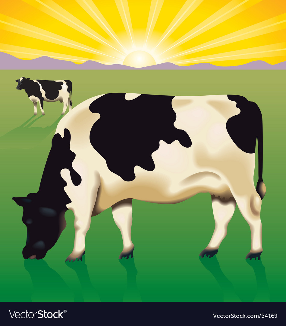 Cows at sunrise vector | Price: 3 Credit (USD $3)