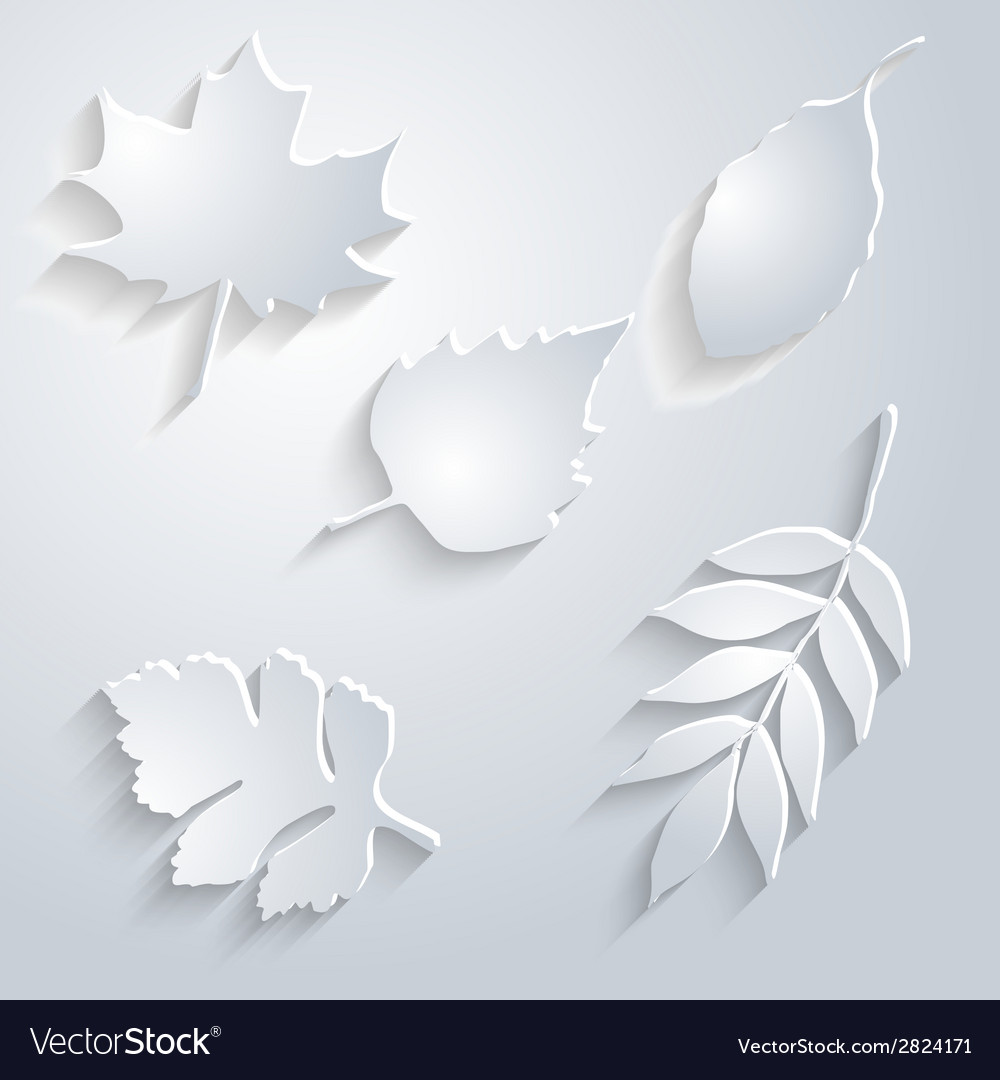 Abstract maple leaf on white background vector | Price: 1 Credit (USD $1)