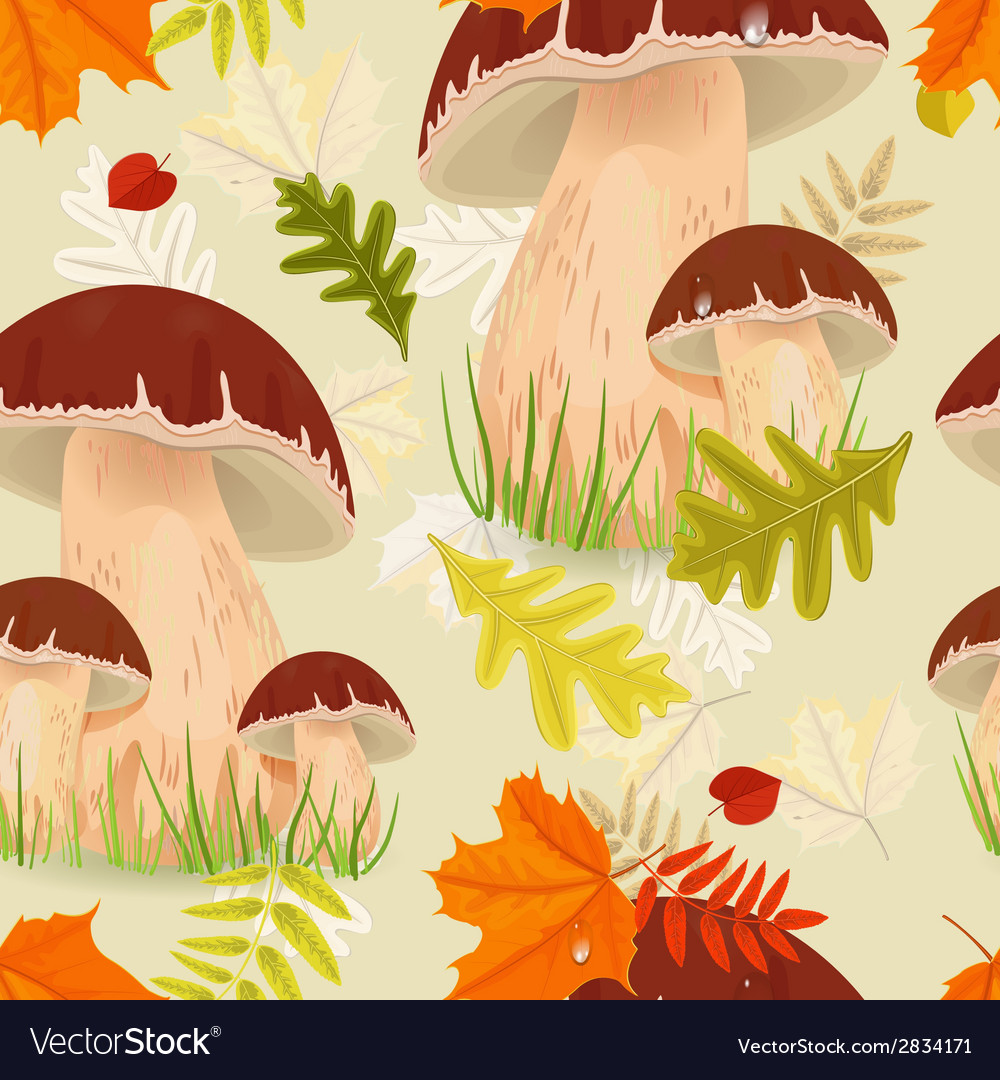 Seamless texture with forest mushroom vector | Price: 1 Credit (USD $1)