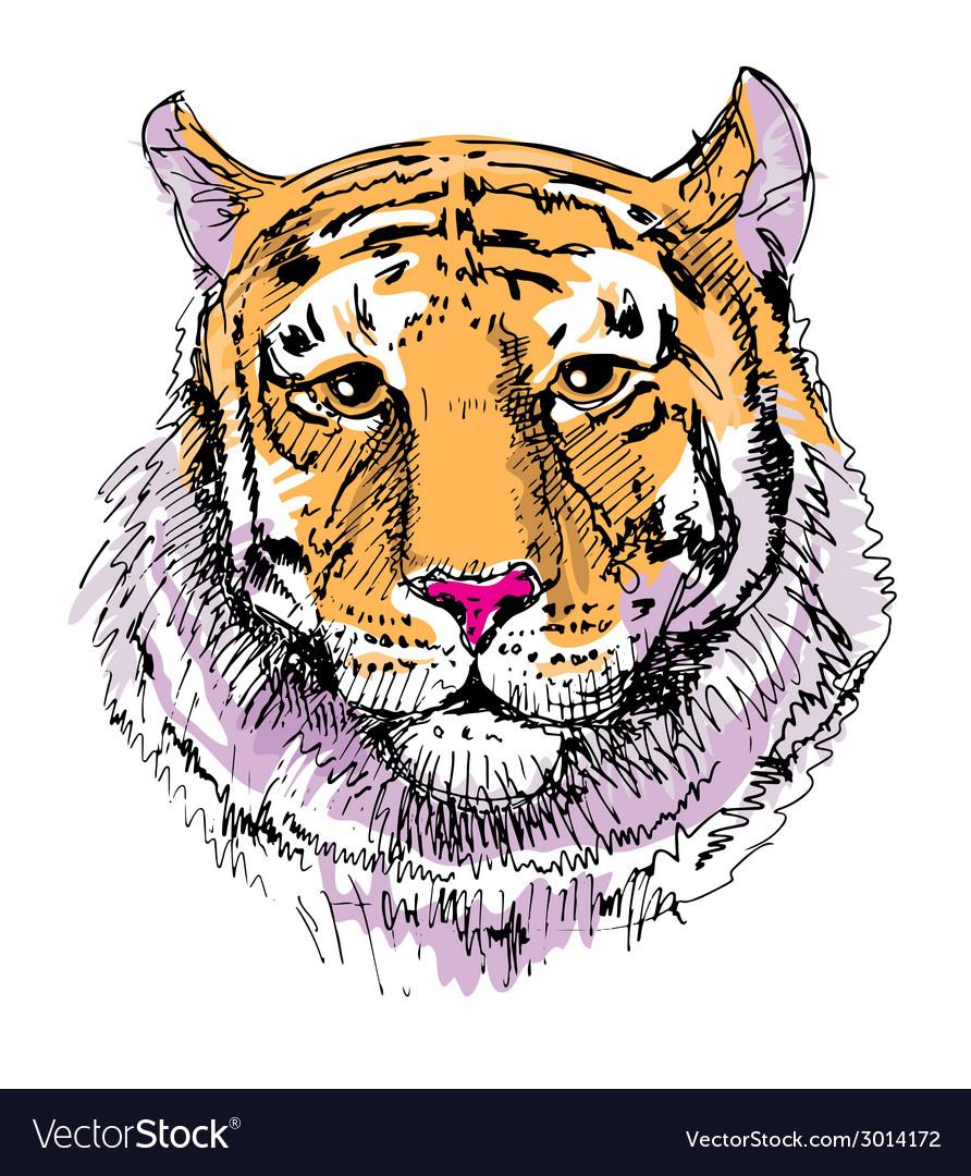 Artwork tiger sketch drawing vector | Price: 1 Credit (USD $1)