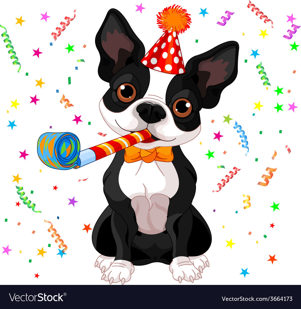 Boston terrier party vector | Price: 1 Credit (USD $1)