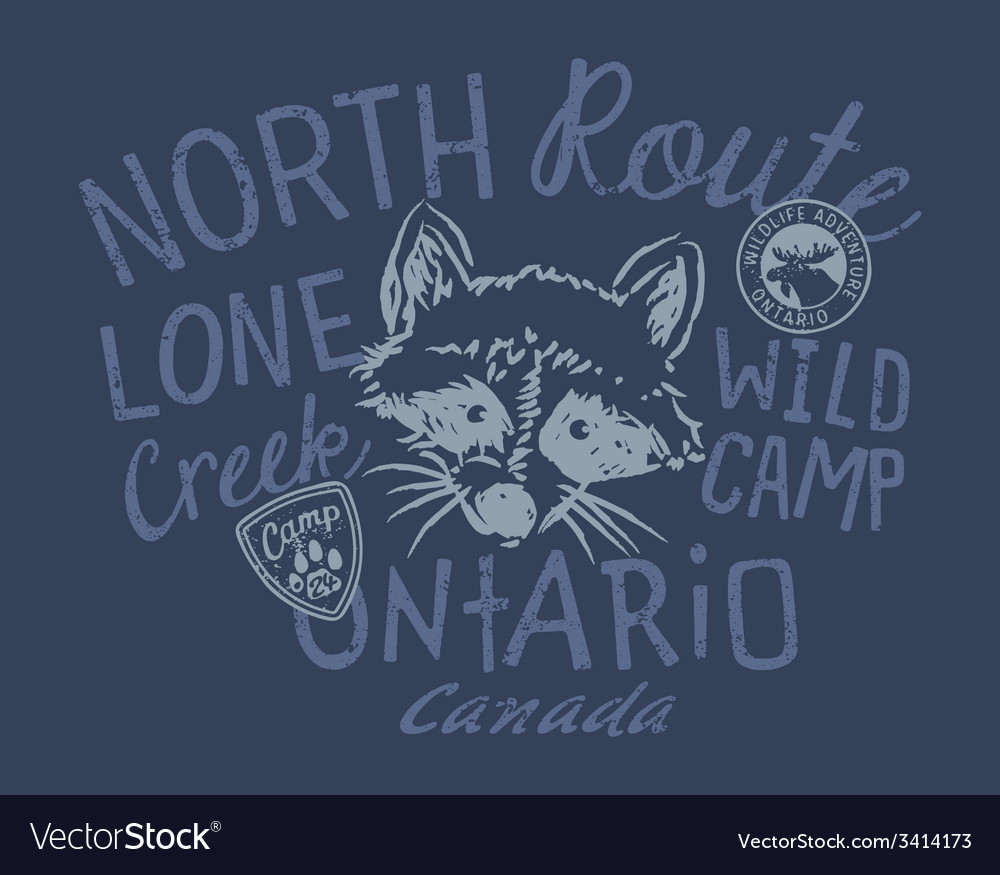 Raccoon wild camp vector | Price: 1 Credit (USD $1)