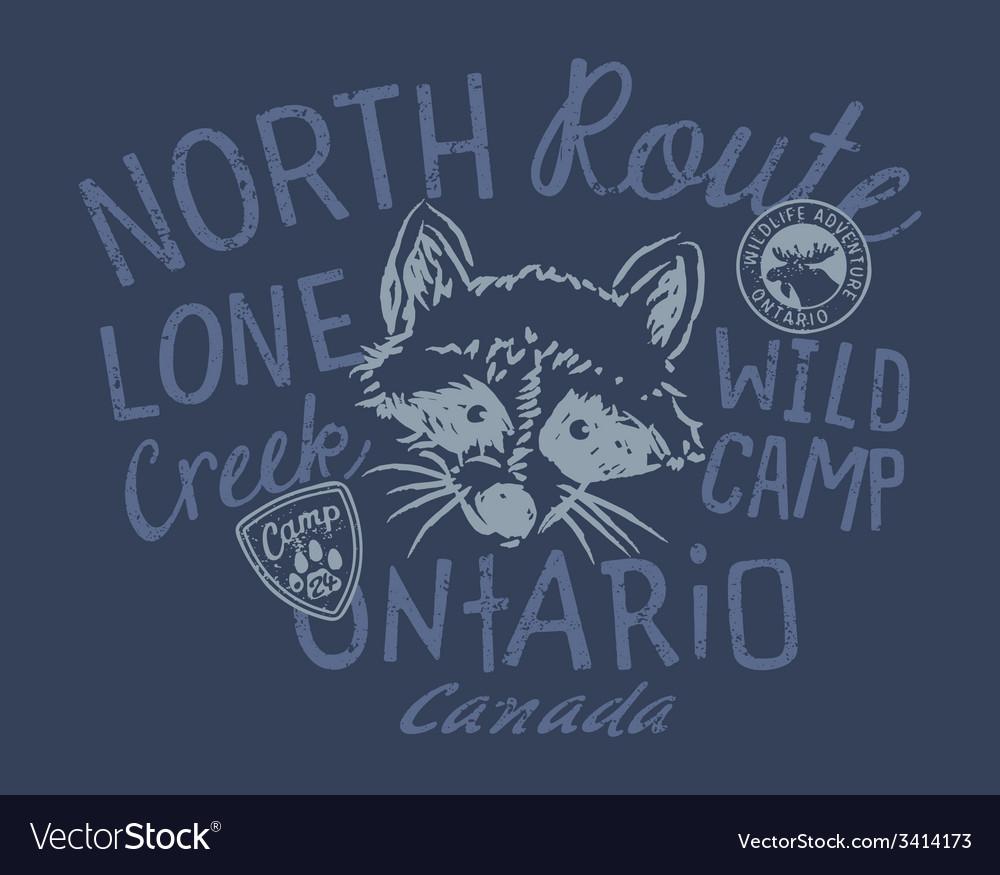 Raccoon wild camp vector   Price: 1 Credit (USD $1)