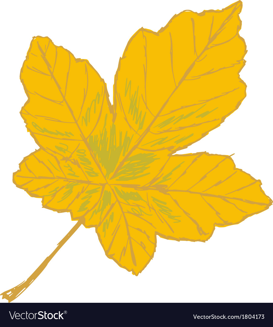 Yellow leaf vector | Price: 1 Credit (USD $1)