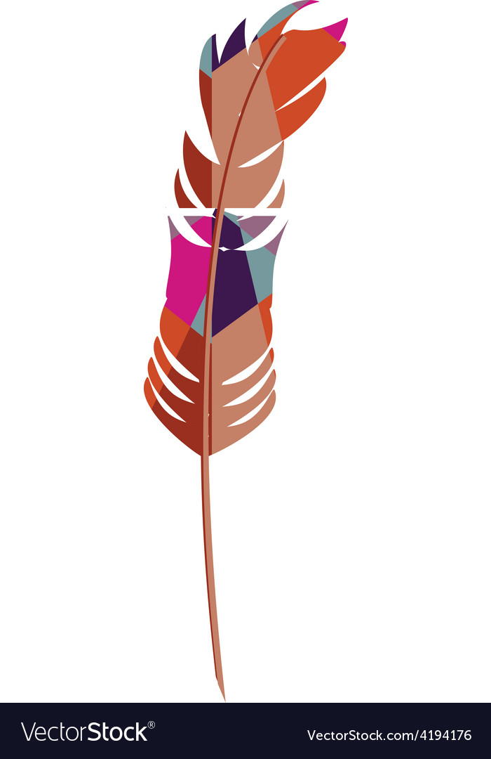 Colorful feather vector | Price: 1 Credit (USD $1)