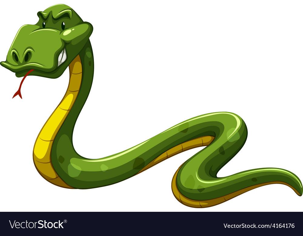 Green snake vector | Price: 1 Credit (USD $1)