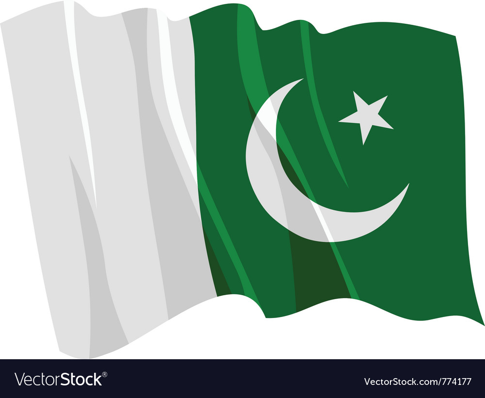 Flag of pakistan vector | Price: 1 Credit (USD $1)