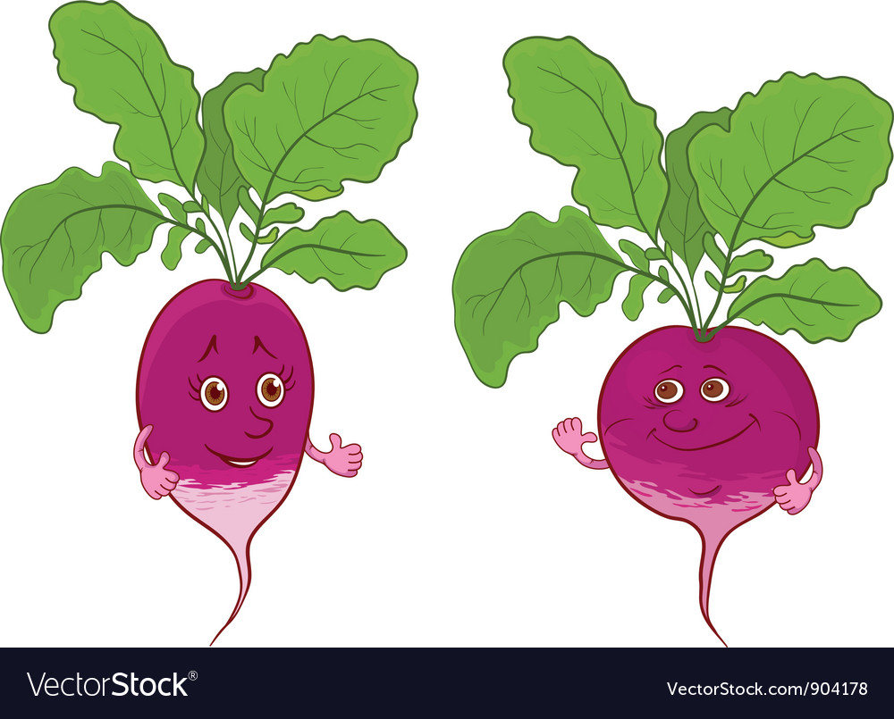 Character radish vector | Price: 1 Credit (USD $1)
