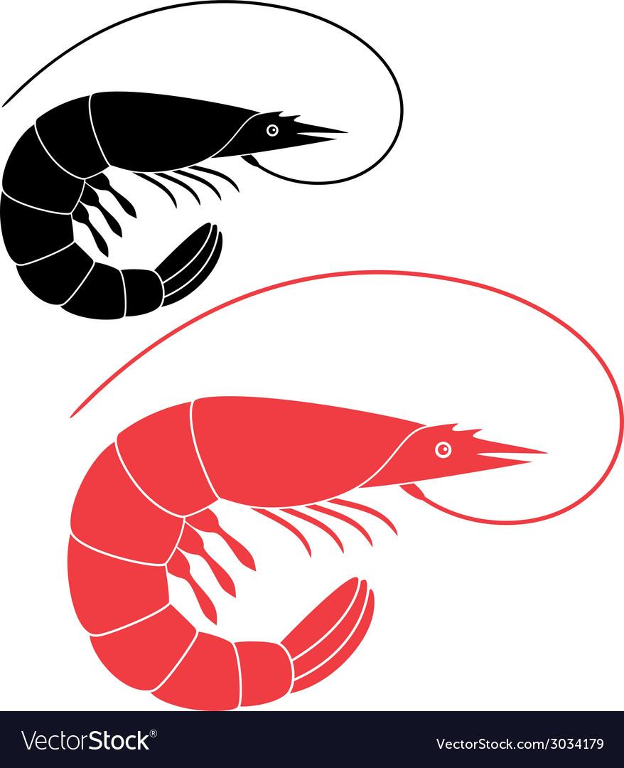 Shrimp vector | Price: 1 Credit (USD $1)