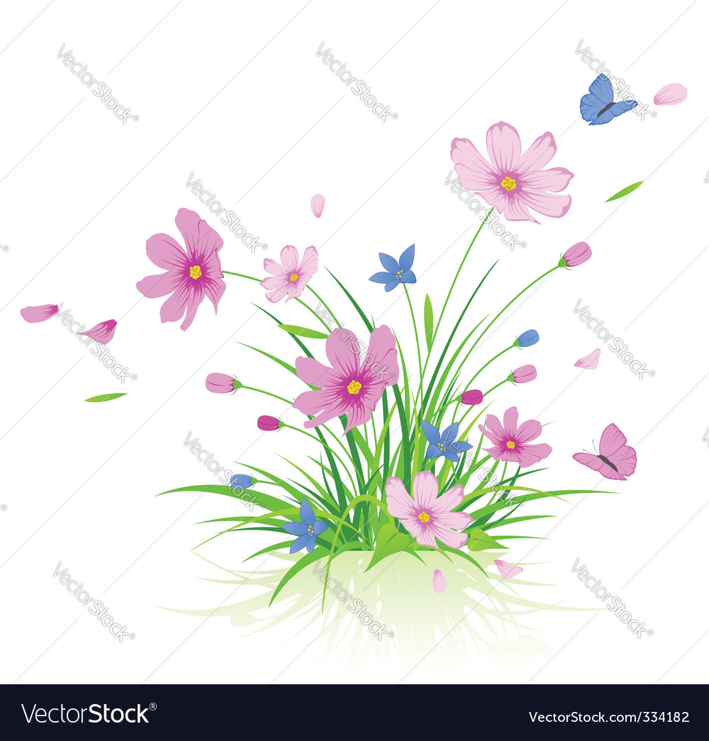 Floral background with cosmos flowers vector | Price: 1 Credit (USD $1)