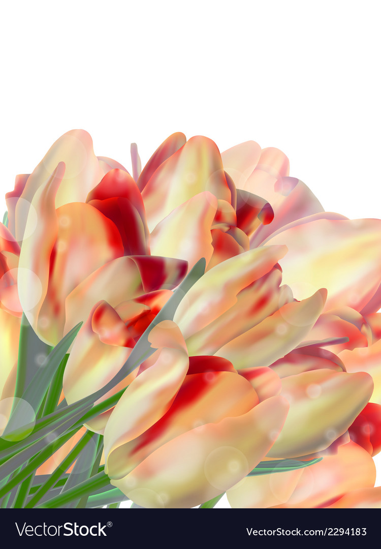 Bunch of beautiful spring flowers eps 10 vector | Price: 1 Credit (USD $1)