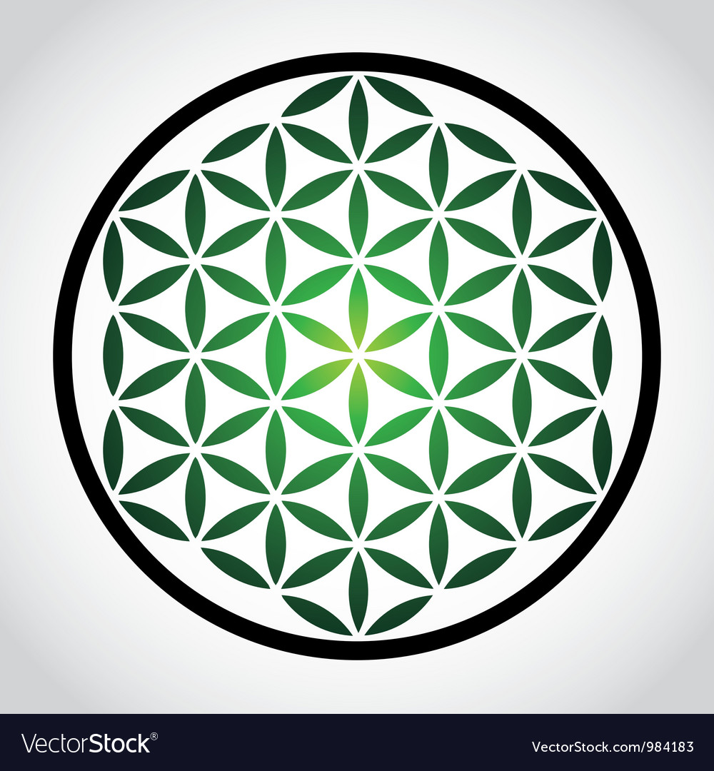 Flower of life vector | Price: 1 Credit (USD $1)