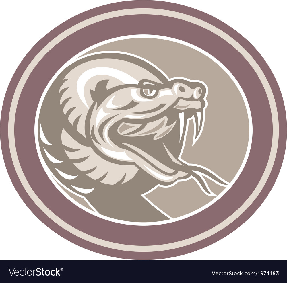 Rattle snake head retro vector | Price: 1 Credit (USD $1)