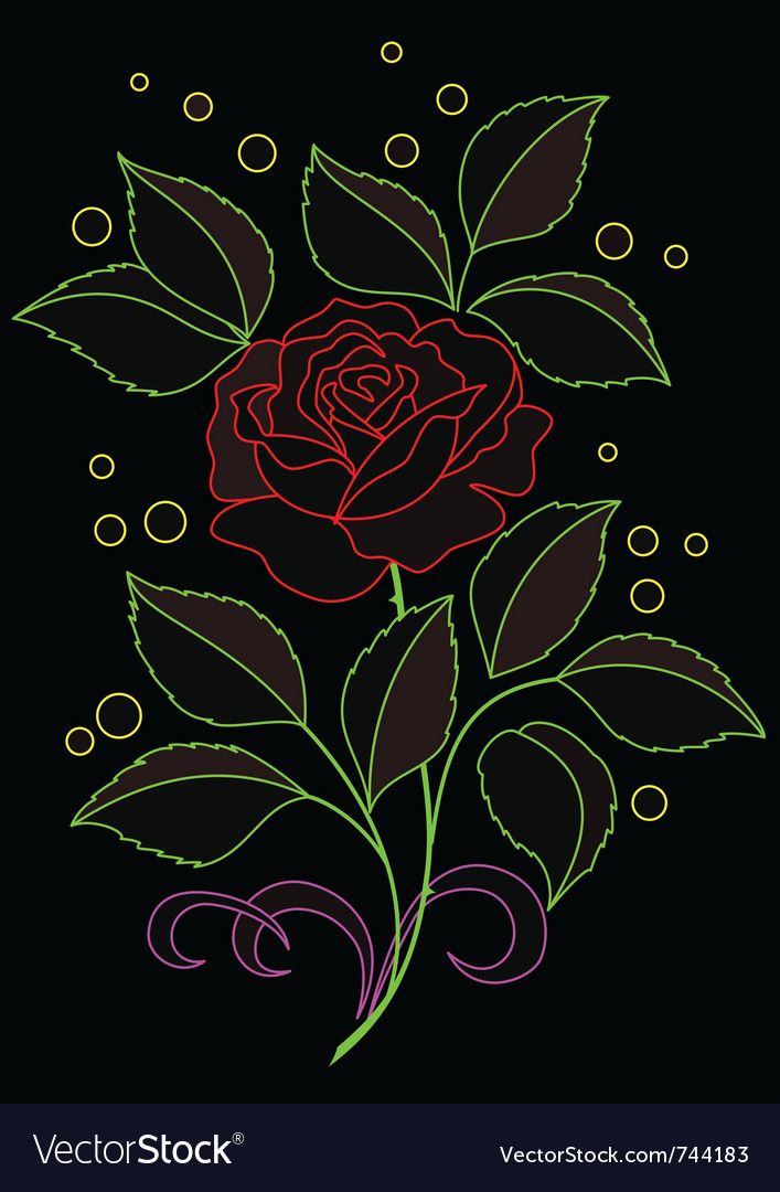 Rose flower vector | Price: 1 Credit (USD $1)