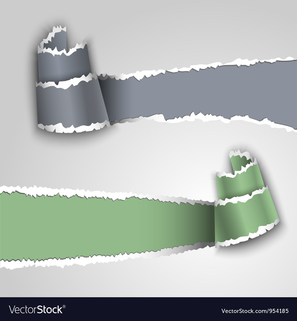 Ripped paper banners vector | Price: 1 Credit (USD $1)