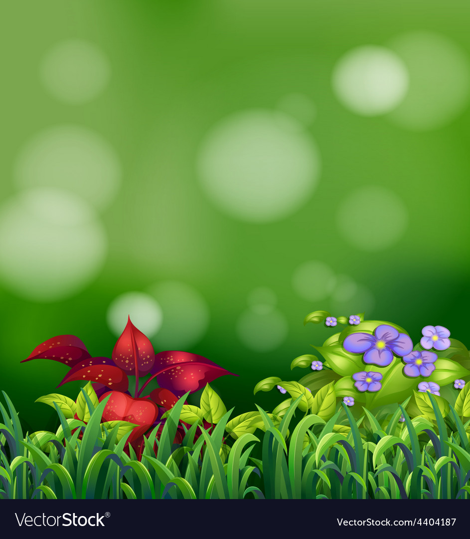 Grass and flowers vector | Price: 3 Credit (USD $3)
