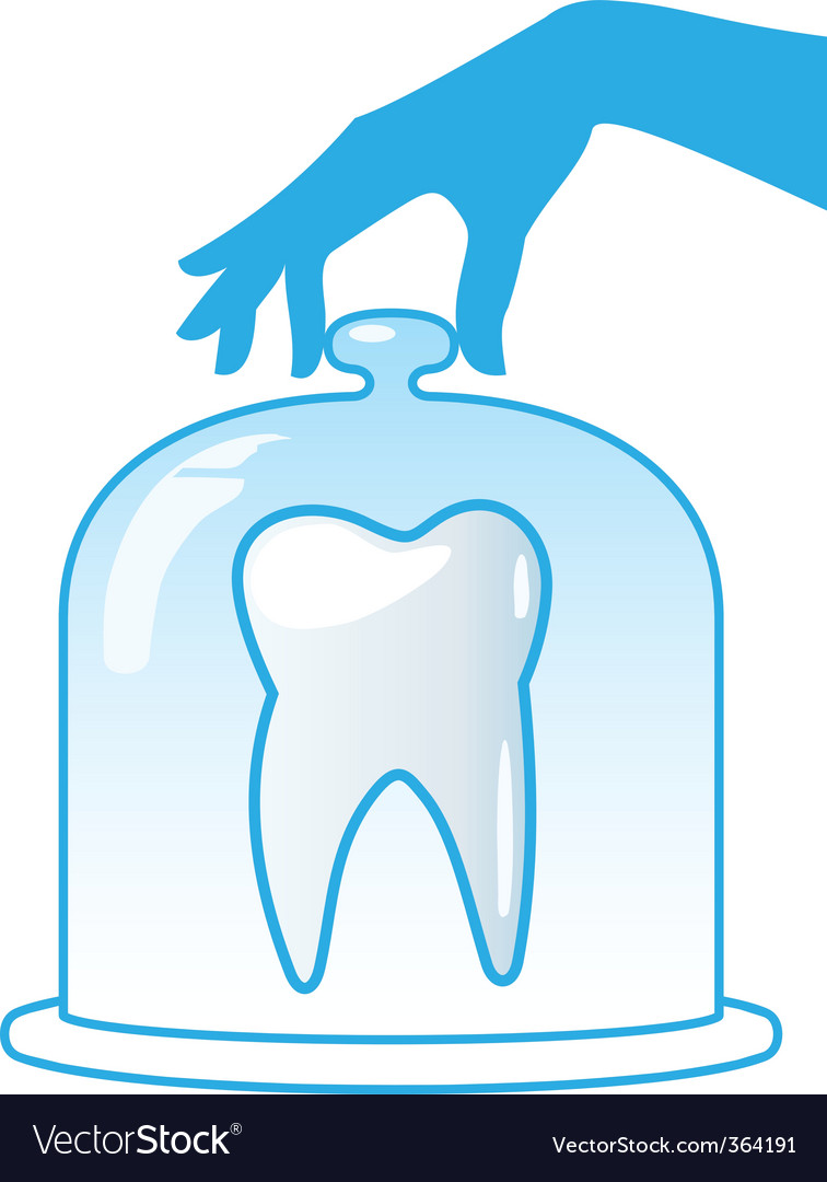 Healthy tooth vector | Price: 1 Credit (USD $1)