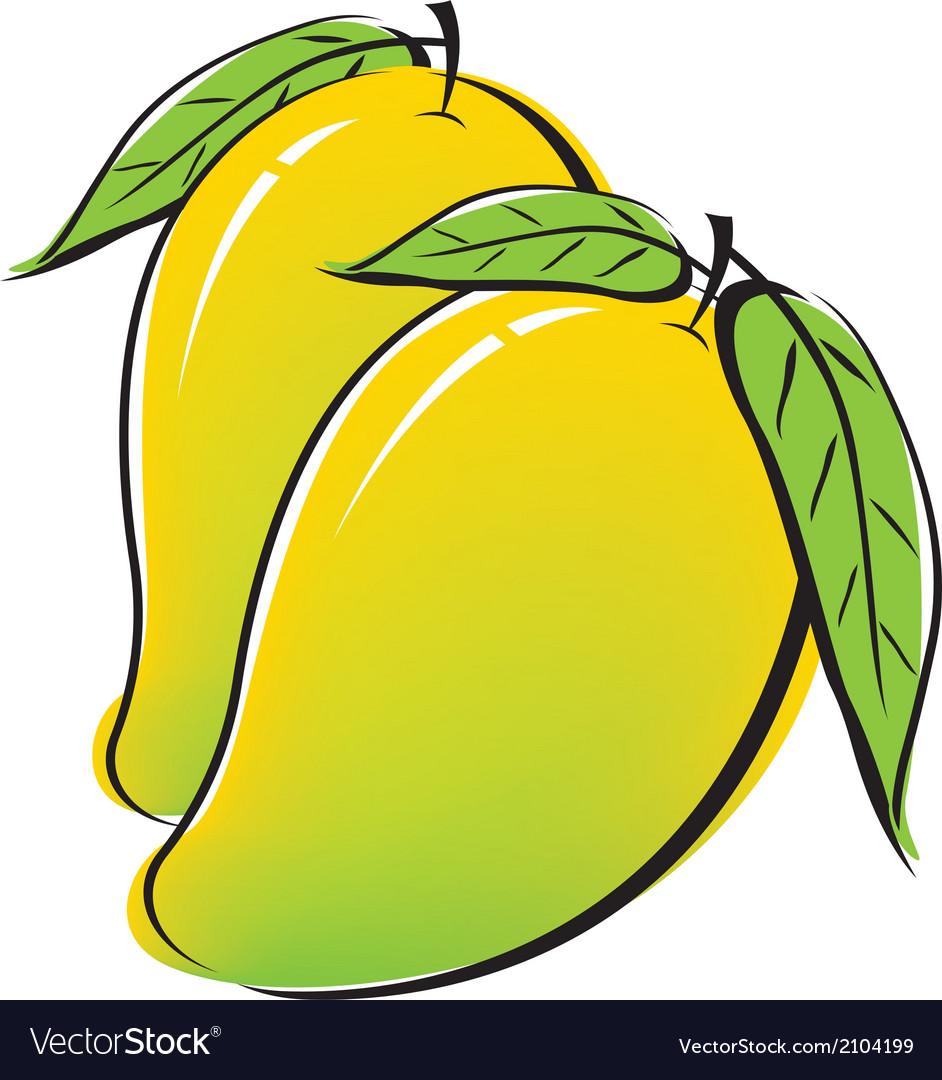 Mango design on white background vector | Price: 1 Credit (USD $1)