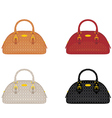 Designer female bags vector