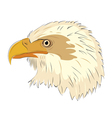 Eagle head isolated on white background vector