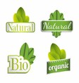 Eco bio natural organic icon set vector