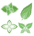 Mint leaves icons vector