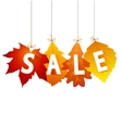Sale autumn vector
