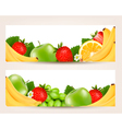 Two banners with colorful fresh fruit vector
