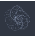 Hand-drawing flower vector
