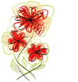 Flowers hand made vector