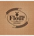 Flour sackcloth texture background vector