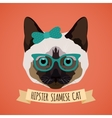 Hipster cat portrait vector