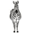 Zebra black and zero vector