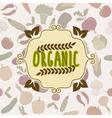Organic food frame vegetables pattern vector