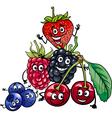 Berry fruits group cartoon vector