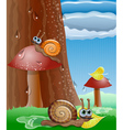 Cute picture with snails vector