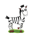 Cute cartoon zebra on green grass vector